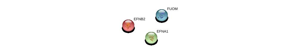 http://string-db.org/version_10/api/image/networkList?limit=0&targetmode=proteins&caller_identity=gene_cards&network_flavor=evidence&identifiers=9606.ENSP00000357540%0d%0a9606.ENSP00000245323%0d%0a9606.ENSP00000357392%0d%0a