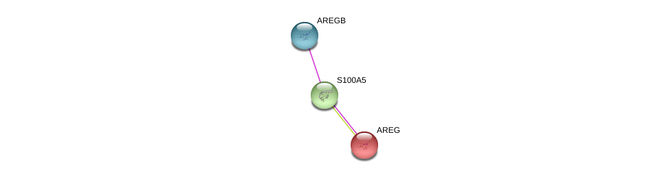 http://string-db.org/version_10/api/image/networkList?limit=0&targetmode=proteins&caller_identity=gene_cards&network_flavor=evidence&identifiers=9606.ENSP00000357706%0d%0a9606.ENSP00000264487%0d%0a9606.ENSP00000370227%0d%0a
