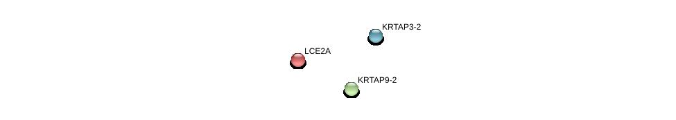 http://string-db.org/version_10/api/image/networkList?limit=0&targetmode=proteins&caller_identity=gene_cards&network_flavor=evidence&identifiers=9606.ENSP00000357768%0d%0a9606.ENSP00000375429%0d%0a9606.ENSP00000366950%0d%0a