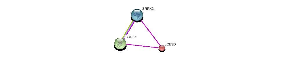 http://string-db.org/version_10/api/image/networkList?limit=0&targetmode=proteins&caller_identity=gene_cards&network_flavor=evidence&identifiers=9606.ENSP00000357776%0d%0a9606.ENSP00000377262%0d%0a9606.ENSP00000362931%0d%0a