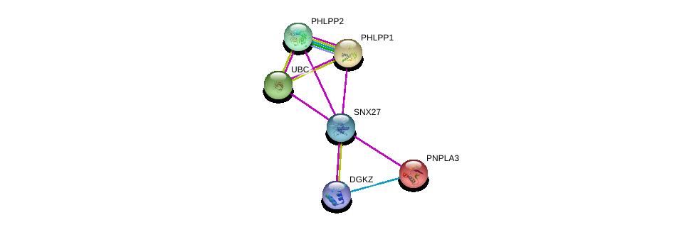 http://string-db.org/version_10/api/image/networkList?limit=0&targetmode=proteins&caller_identity=gene_cards&network_flavor=evidence&identifiers=9606.ENSP00000357836%0d%0a9606.ENSP00000262719%0d%0a9606.ENSP00000348611%0d%0a9606.ENSP00000344818%0d%0a9606.ENSP00000216180%0d%0a9606.ENSP00000412178%0d%0a