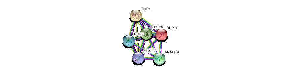 http://string-db.org/version_10/api/image/networkList?limit=0&targetmode=proteins&caller_identity=gene_cards&network_flavor=evidence&identifiers=9606.ENSP00000357858%0d%0a9606.ENSP00000287598%0d%0a9606.ENSP00000308450%0d%0a9606.ENSP00000318775%0d%0a9606.ENSP00000434614%0d%0a9606.ENSP00000302530%0d%0a