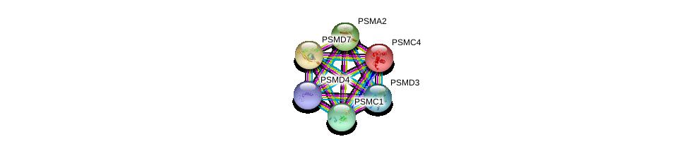 http://string-db.org/version_10/api/image/networkList?limit=0&targetmode=proteins&caller_identity=gene_cards&network_flavor=evidence&identifiers=9606.ENSP00000357879%0d%0a9606.ENSP00000264639%0d%0a9606.ENSP00000219313%0d%0a9606.ENSP00000261303%0d%0a9606.ENSP00000223321%0d%0a9606.ENSP00000157812%0d%0a