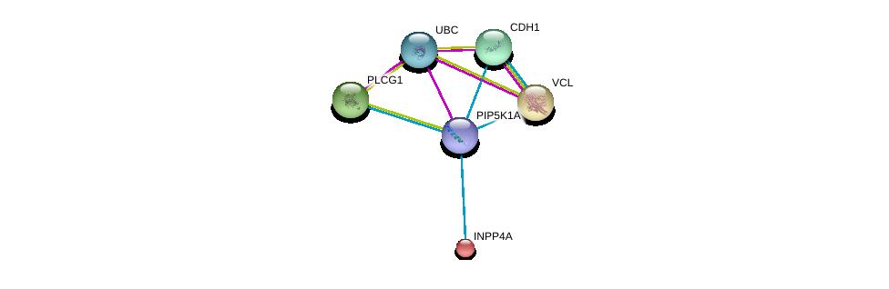 http://string-db.org/version_10/api/image/networkList?limit=0&targetmode=proteins&caller_identity=gene_cards&network_flavor=evidence&identifiers=9606.ENSP00000357883%0d%0a9606.ENSP00000344818%0d%0a9606.ENSP00000211998%0d%0a9606.ENSP00000244007%0d%0a9606.ENSP00000261769%0d%0a9606.ENSP00000074304%0d%0a