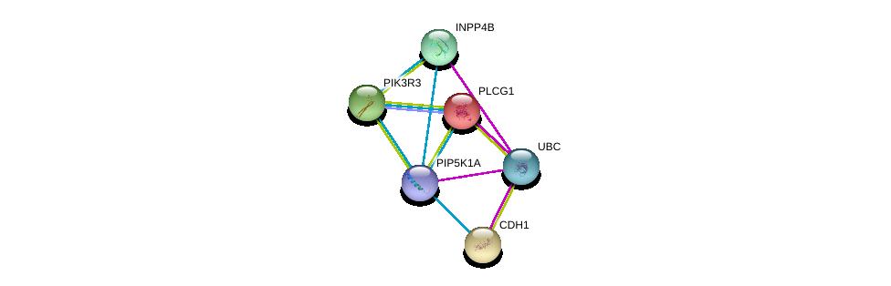 http://string-db.org/version_10/api/image/networkList?limit=0&targetmode=proteins&caller_identity=gene_cards&network_flavor=evidence&identifiers=9606.ENSP00000357883%0d%0a9606.ENSP00000344818%0d%0a9606.ENSP00000244007%0d%0a9606.ENSP00000261769%0d%0a9606.ENSP00000262741%0d%0a9606.ENSP00000262992%0d%0a