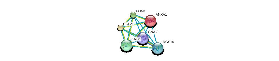 http://string-db.org/version_10/api/image/networkList?limit=0&targetmode=proteins&caller_identity=gene_cards&network_flavor=evidence&identifiers=9606.ENSP00000358099%0d%0a9606.ENSP00000358867%0d%0a9606.ENSP00000259607%0d%0a9606.ENSP00000257497%0d%0a9606.ENSP00000264708%0d%0a9606.ENSP00000265023%0d%0a