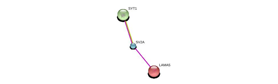 http://string-db.org/version_10/api/image/networkList?limit=0&targetmode=proteins&caller_identity=gene_cards&network_flavor=evidence&identifiers=9606.ENSP00000358142%0d%0a9606.ENSP00000252999%0d%0a9606.ENSP00000261205%0d%0a