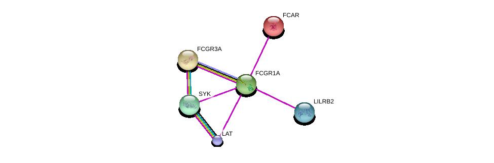 http://string-db.org/version_10/api/image/networkList?limit=0&targetmode=proteins&caller_identity=gene_cards&network_flavor=evidence&identifiers=9606.ENSP00000358165%0d%0a9606.ENSP00000378845%0d%0a9606.ENSP00000375629%0d%0a9606.ENSP00000364898%0d%0a9606.ENSP00000347714%0d%0a9606.ENSP00000356946%0d%0a