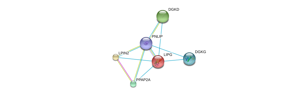 http://string-db.org/version_10/api/image/networkList?limit=0&targetmode=proteins&caller_identity=gene_cards&network_flavor=evidence&identifiers=9606.ENSP00000358223%0d%0a9606.ENSP00000261292%0d%0a9606.ENSP00000261596%0d%0a9606.ENSP00000264057%0d%0a9606.ENSP00000264775%0d%0a9606.ENSP00000265022%0d%0a
