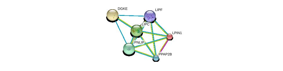 http://string-db.org/version_10/api/image/networkList?limit=0&targetmode=proteins&caller_identity=gene_cards&network_flavor=evidence&identifiers=9606.ENSP00000358223%0d%0a9606.ENSP00000284061%0d%0a9606.ENSP00000256720%0d%0a9606.ENSP00000377900%0d%0a9606.ENSP00000360296%0d%0a9606.ENSP00000299022%0d%0a
