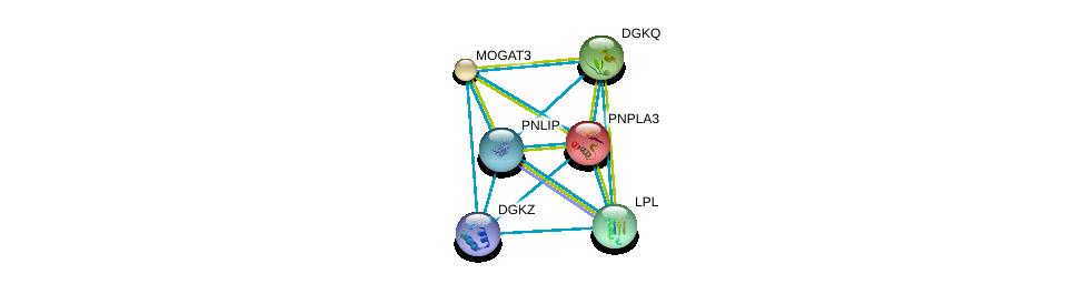 http://string-db.org/version_10/api/image/networkList?limit=0&targetmode=proteins&caller_identity=gene_cards&network_flavor=evidence&identifiers=9606.ENSP00000358223%0d%0a9606.ENSP00000309757%0d%0a9606.ENSP00000223114%0d%0a9606.ENSP00000216180%0d%0a9606.ENSP00000412178%0d%0a9606.ENSP00000273814%0d%0a