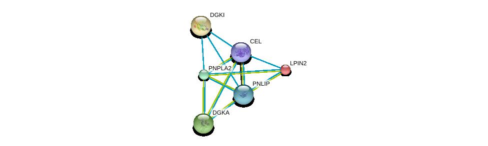 http://string-db.org/version_10/api/image/networkList?limit=0&targetmode=proteins&caller_identity=gene_cards&network_flavor=evidence&identifiers=9606.ENSP00000358223%0d%0a9606.ENSP00000337701%0d%0a9606.ENSP00000361151%0d%0a9606.ENSP00000328405%0d%0a9606.ENSP00000288490%0d%0a9606.ENSP00000261596%0d%0a