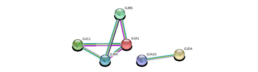 http://string-db.org/version_10/api/image/networkList?limit=0&targetmode=proteins&caller_identity=gene_cards&network_flavor=evidence&identifiers=9606.ENSP00000358358%0d%0a9606.ENSP00000282561%0d%0a9606.ENSP00000315070%0d%0a9606.ENSP00000333193%0d%0a9606.ENSP00000340811%0d%0a9606.ENSP00000345868%0d%0a