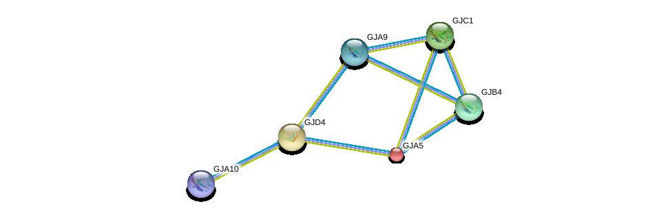 http://string-db.org/version_10/api/image/networkList?limit=0&targetmode=proteins&caller_identity=gene_cards&network_flavor=evidence&identifiers=9606.ENSP00000358358%0d%0a9606.ENSP00000333193%0d%0a9606.ENSP00000345868%0d%0a9606.ENSP00000271348%0d%0a9606.ENSP00000350415%0d%0a9606.ENSP00000315070%0d%0a