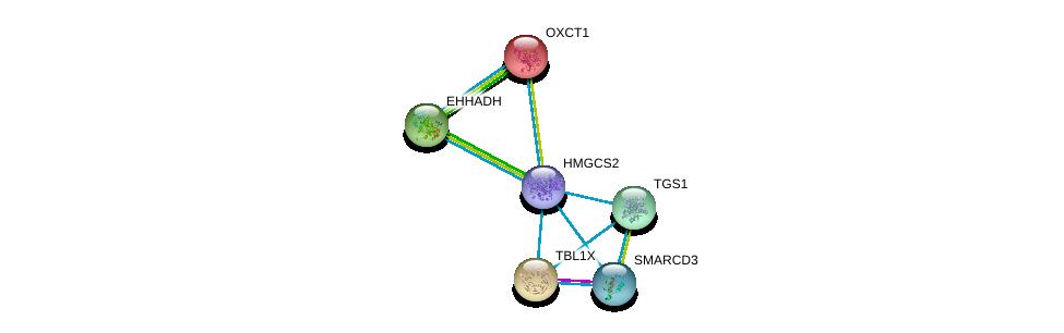 http://string-db.org/version_10/api/image/networkList?limit=0&targetmode=proteins&caller_identity=gene_cards&network_flavor=evidence&identifiers=9606.ENSP00000358414%0d%0a9606.ENSP00000196371%0d%0a9606.ENSP00000217964%0d%0a9606.ENSP00000231887%0d%0a9606.ENSP00000260129%0d%0a9606.ENSP00000262188%0d%0a