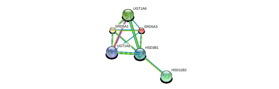 http://string-db.org/version_10/api/image/networkList?limit=0&targetmode=proteins&caller_identity=gene_cards&network_flavor=evidence&identifiers=9606.ENSP00000358421%0d%0a9606.ENSP00000264228%0d%0a9606.ENSP00000316786%0d%0a9606.ENSP00000303174%0d%0a9606.ENSP00000362549%0d%0a9606.ENSP00000274192%0d%0a