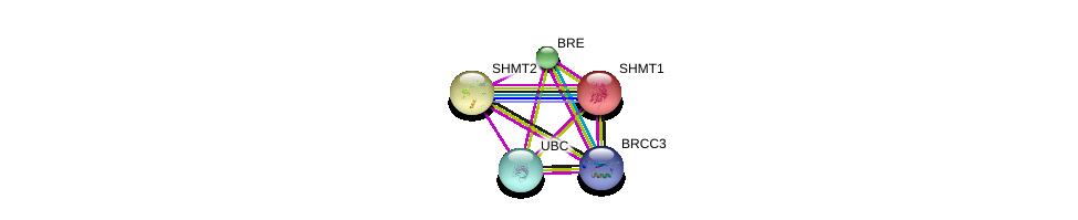 http://string-db.org/version_10/api/image/networkList?limit=0&targetmode=proteins&caller_identity=gene_cards&network_flavor=evidence&identifiers=9606.ENSP00000358474%0d%0a9606.ENSP00000343412%0d%0a9606.ENSP00000333667%0d%0a9606.ENSP00000318868%0d%0a9606.ENSP00000318868%0d%0a9606.ENSP00000344818%0d%0a