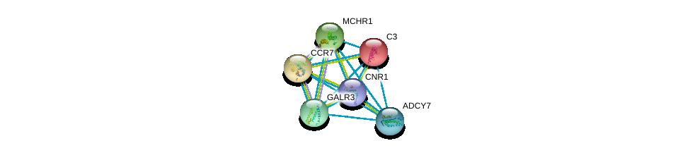 http://string-db.org/version_10/api/image/networkList?limit=0&targetmode=proteins&caller_identity=gene_cards&network_flavor=evidence&identifiers=9606.ENSP00000358511%0d%0a9606.ENSP00000245907%0d%0a9606.ENSP00000246657%0d%0a9606.ENSP00000249016%0d%0a9606.ENSP00000249041%0d%0a9606.ENSP00000254235%0d%0a