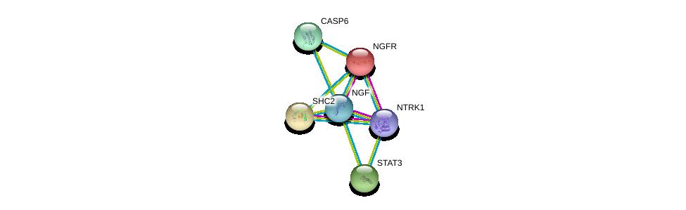 http://string-db.org/version_10/api/image/networkList?limit=0&targetmode=proteins&caller_identity=gene_cards&network_flavor=evidence&identifiers=9606.ENSP00000358525%0d%0a9606.ENSP00000431418%0d%0a9606.ENSP00000172229%0d%0a9606.ENSP00000264657%0d%0a9606.ENSP00000264554%0d%0a9606.ENSP00000265164%0d%0a