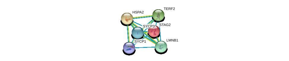 http://string-db.org/version_10/api/image/networkList?limit=0&targetmode=proteins&caller_identity=gene_cards&network_flavor=evidence&identifiers=9606.ENSP00000358531%0d%0a9606.ENSP00000218089%0d%0a9606.ENSP00000247207%0d%0a9606.ENSP00000254942%0d%0a9606.ENSP00000261366%0d%0a9606.ENSP00000266743%0d%0a