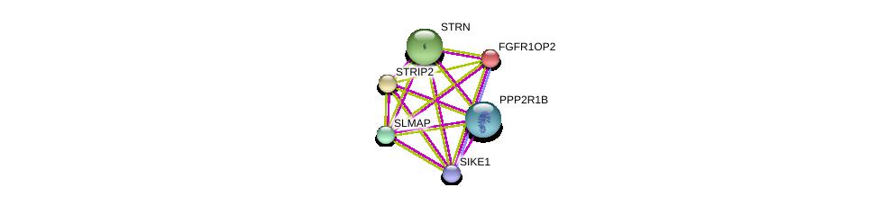 http://string-db.org/version_10/api/image/networkList?limit=0&targetmode=proteins&caller_identity=gene_cards&network_flavor=evidence&identifiers=9606.ENSP00000358541%0d%0a9606.ENSP00000229395%0d%0a9606.ENSP00000249344%0d%0a9606.ENSP00000263918%0d%0a9606.ENSP00000295951%0d%0a9606.ENSP00000311344%0d%0a