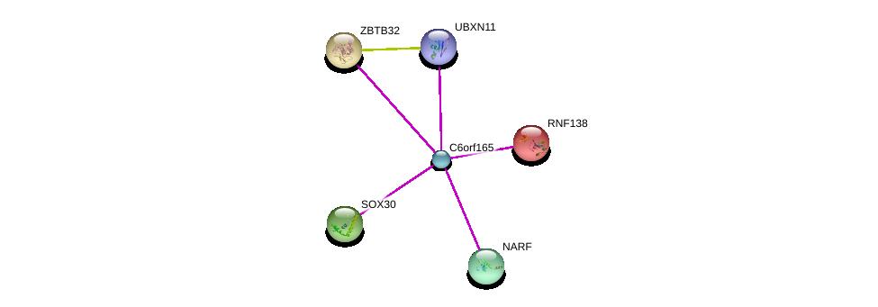 http://string-db.org/version_10/api/image/networkList?limit=0&targetmode=proteins&caller_identity=gene_cards&network_flavor=evidence&identifiers=9606.ENSP00000358575%0d%0a9606.ENSP00000265007%0d%0a9606.ENSP00000309899%0d%0a9606.ENSP00000261593%0d%0a9606.ENSP00000363338%0d%0a9606.ENSP00000262630%0d%0a