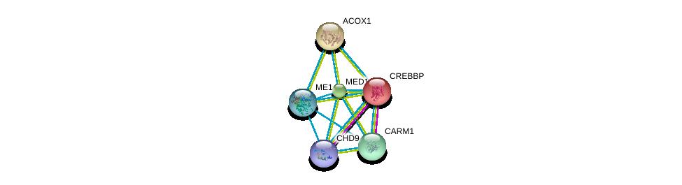 http://string-db.org/version_10/api/image/networkList?limit=0&targetmode=proteins&caller_identity=gene_cards&network_flavor=evidence&identifiers=9606.ENSP00000358719%0d%0a9606.ENSP00000325690%0d%0a9606.ENSP00000262367%0d%0a9606.ENSP00000293217%0d%0a9606.ENSP00000300651%0d%0a9606.ENSP00000455307%0d%0a