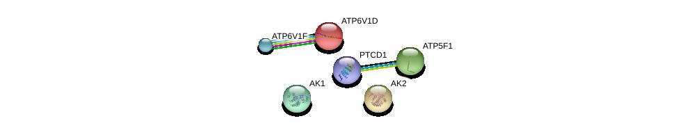 http://string-db.org/version_10/api/image/networkList?limit=0&targetmode=proteins&caller_identity=gene_cards&network_flavor=evidence&identifiers=9606.ENSP00000358737%0d%0a9606.ENSP00000346921%0d%0a9606.ENSP00000216442%0d%0a9606.ENSP00000417378%0d%0a9606.ENSP00000450995%0d%0a9606.ENSP00000362249%0d%0a