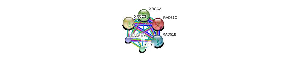 http://string-db.org/version_10/api/image/networkList?limit=0&targetmode=proteins&caller_identity=gene_cards&network_flavor=evidence&identifiers=9606.ENSP00000358742%0d%0a9606.ENSP00000336701%0d%0a9606.ENSP00000343392%0d%0a9606.ENSP00000352271%0d%0a9606.ENSP00000419471%0d%0a9606.ENSP00000466399%0d%0a