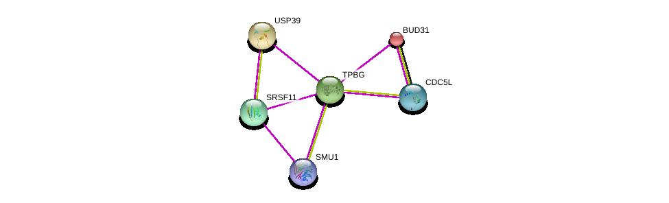 http://string-db.org/version_10/api/image/networkList?limit=0&targetmode=proteins&caller_identity=gene_cards&network_flavor=evidence&identifiers=9606.ENSP00000358765%0d%0a9606.ENSP00000312981%0d%0a9606.ENSP00000380336%0d%0a9606.ENSP00000359988%0d%0a9606.ENSP00000222969%0d%0a9606.ENSP00000360532%0d%0a