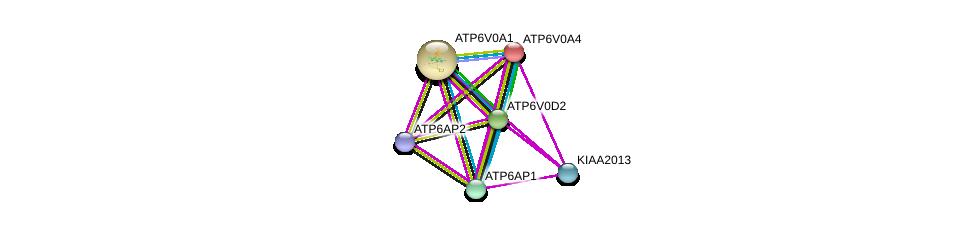 http://string-db.org/version_10/api/image/networkList?limit=0&targetmode=proteins&caller_identity=gene_cards&network_flavor=evidence&identifiers=9606.ENSP00000358777%0d%0a9606.ENSP00000365756%0d%0a9606.ENSP00000367697%0d%0a9606.ENSP00000253856%0d%0a9606.ENSP00000264649%0d%0a9606.ENSP00000285393%0d%0a