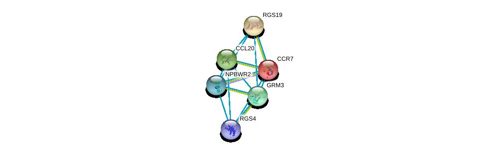 http://string-db.org/version_10/api/image/networkList?limit=0&targetmode=proteins&caller_identity=gene_cards&network_flavor=evidence&identifiers=9606.ENSP00000358783%0d%0a9606.ENSP00000355316%0d%0a9606.ENSP00000351671%0d%0a9606.ENSP00000397181%0d%0a9606.ENSP00000333194%0d%0a9606.ENSP00000246657%0d%0a