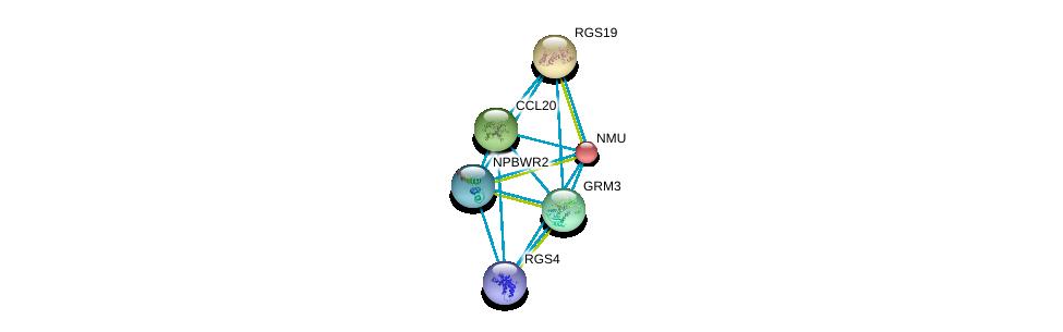 http://string-db.org/version_10/api/image/networkList?limit=0&targetmode=proteins&caller_identity=gene_cards&network_flavor=evidence&identifiers=9606.ENSP00000358783%0d%0a9606.ENSP00000355316%0d%0a9606.ENSP00000351671%0d%0a9606.ENSP00000397181%0d%0a9606.ENSP00000333194%0d%0a9606.ENSP00000264218%0d%0a