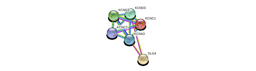 http://string-db.org/version_10/api/image/networkList?limit=0&targetmode=proteins&caller_identity=gene_cards&network_flavor=evidence&identifiers=9606.ENSP00000358784%0d%0a9606.ENSP00000293813%0d%0a9606.ENSP00000319591%0d%0a9606.ENSP00000449253%0d%0a9606.ENSP00000304127%0d%0a9606.ENSP00000265969%0d%0a