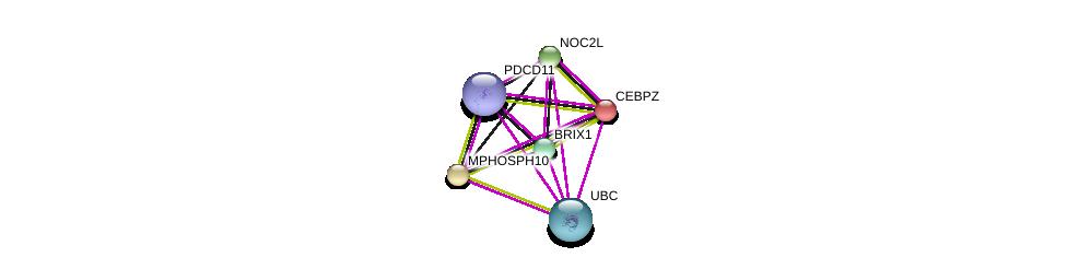 http://string-db.org/version_10/api/image/networkList?limit=0&targetmode=proteins&caller_identity=gene_cards&network_flavor=evidence&identifiers=9606.ENSP00000358812%0d%0a9606.ENSP00000234170%0d%0a9606.ENSP00000244230%0d%0a9606.ENSP00000317992%0d%0a9606.ENSP00000338862%0d%0a9606.ENSP00000344818%0d%0a