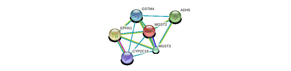 http://string-db.org/version_10/api/image/networkList?limit=0&targetmode=proteins&caller_identity=gene_cards&network_flavor=evidence&identifiers=9606.ENSP00000358851%0d%0a9606.ENSP00000356859%0d%0a9606.ENSP00000265498%0d%0a9606.ENSP00000360372%0d%0a9606.ENSP00000272167%0d%0a9606.ENSP00000296412%0d%0a