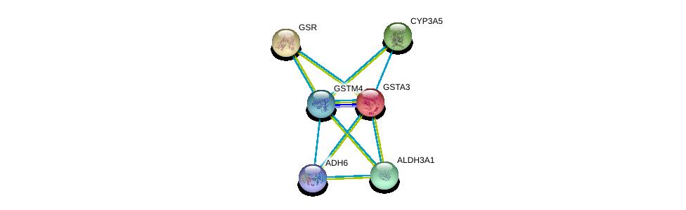 http://string-db.org/version_10/api/image/networkList?limit=0&targetmode=proteins&caller_identity=gene_cards&network_flavor=evidence&identifiers=9606.ENSP00000358851%0d%0a9606.ENSP00000378359%0d%0a9606.ENSP00000211122%0d%0a9606.ENSP00000221130%0d%0a9606.ENSP00000222982%0d%0a9606.ENSP00000225740%0d%0a