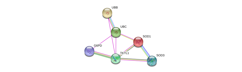 http://string-db.org/version_10/api/image/networkList?limit=0&targetmode=proteins&caller_identity=gene_cards&network_flavor=evidence&identifiers=9606.ENSP00000358931%0d%0a9606.ENSP00000270142%0d%0a9606.ENSP00000304697%0d%0a9606.ENSP00000344818%0d%0a9606.ENSP00000371554%0d%0a9606.ENSP00000377192%0d%0a