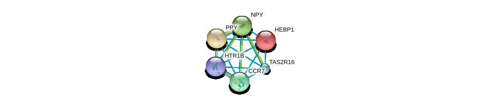http://string-db.org/version_10/api/image/networkList?limit=0&targetmode=proteins&caller_identity=gene_cards&network_flavor=evidence&identifiers=9606.ENSP00000358963%0d%0a9606.ENSP00000014930%0d%0a9606.ENSP00000225992%0d%0a9606.ENSP00000242152%0d%0a9606.ENSP00000246657%0d%0a9606.ENSP00000249284%0d%0a