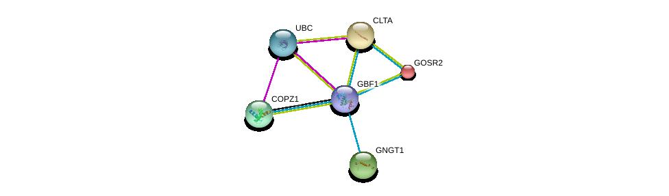 http://string-db.org/version_10/api/image/networkList?limit=0&targetmode=proteins&caller_identity=gene_cards&network_flavor=evidence&identifiers=9606.ENSP00000359000%0d%0a9606.ENSP00000344818%0d%0a9606.ENSP00000225567%0d%0a9606.ENSP00000242285%0d%0a9606.ENSP00000248572%0d%0a9606.ENSP00000262061%0d%0a
