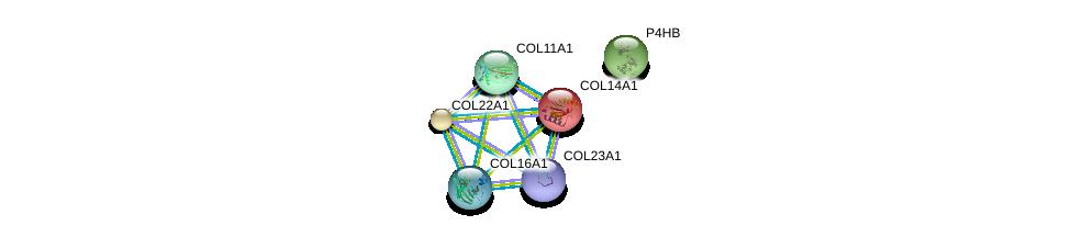 http://string-db.org/version_10/api/image/networkList?limit=0&targetmode=proteins&caller_identity=gene_cards&network_flavor=evidence&identifiers=9606.ENSP00000359114%0d%0a9606.ENSP00000375069%0d%0a9606.ENSP00000303153%0d%0a9606.ENSP00000297848%0d%0a9606.ENSP00000327801%0d%0a9606.ENSP00000362776%0d%0a