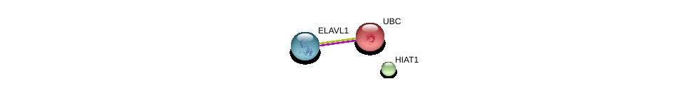 http://string-db.org/version_10/api/image/networkList?limit=0&targetmode=proteins&caller_identity=gene_cards&network_flavor=evidence&identifiers=9606.ENSP00000359171%0d%0a9606.ENSP00000385269%0d%0a9606.ENSP00000344818%0d%0a