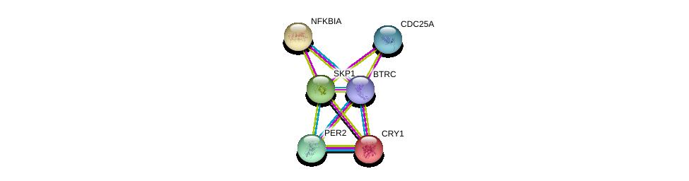 http://string-db.org/version_10/api/image/networkList?limit=0&targetmode=proteins&caller_identity=gene_cards&network_flavor=evidence&identifiers=9606.ENSP00000359206%0d%0a9606.ENSP00000008527%0d%0a9606.ENSP00000216797%0d%0a9606.ENSP00000231487%0d%0a9606.ENSP00000254657%0d%0a9606.ENSP00000303706%0d%0a