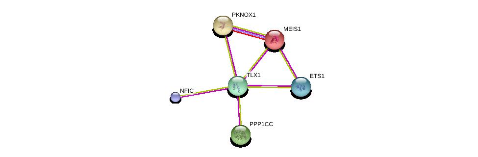 http://string-db.org/version_10/api/image/networkList?limit=0&targetmode=proteins&caller_identity=gene_cards&network_flavor=evidence&identifiers=9606.ENSP00000359215%0d%0a9606.ENSP00000272369%0d%0a9606.ENSP00000335084%0d%0a9606.ENSP00000291547%0d%0a9606.ENSP00000376436%0d%0a9606.ENSP00000465655%0d%0a
