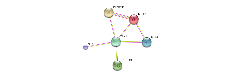 http://string-db.org/version_10/api/image/networkList?limit=0&targetmode=proteins&caller_identity=gene_cards&network_flavor=evidence&identifiers=9606.ENSP00000359215%0d%0a9606.ENSP00000272369%0d%0a9606.ENSP00000335084%0d%0a9606.ENSP00000465655%0d%0a9606.ENSP00000291547%0d%0a9606.ENSP00000376436%0d%0a