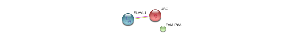 http://string-db.org/version_10/api/image/networkList?limit=0&targetmode=proteins&caller_identity=gene_cards&network_flavor=evidence&identifiers=9606.ENSP00000359292%0d%0a9606.ENSP00000385269%0d%0a9606.ENSP00000344818%0d%0a