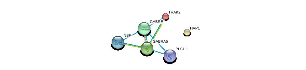 http://string-db.org/version_10/api/image/networkList?limit=0&targetmode=proteins&caller_identity=gene_cards&network_flavor=evidence&identifiers=9606.ENSP00000359353%0d%0a9606.ENSP00000334002%0d%0a9606.ENSP00000381293%0d%0a9606.ENSP00000402861%0d%0a9606.ENSP00000328875%0d%0a9606.ENSP00000335592%0d%0a
