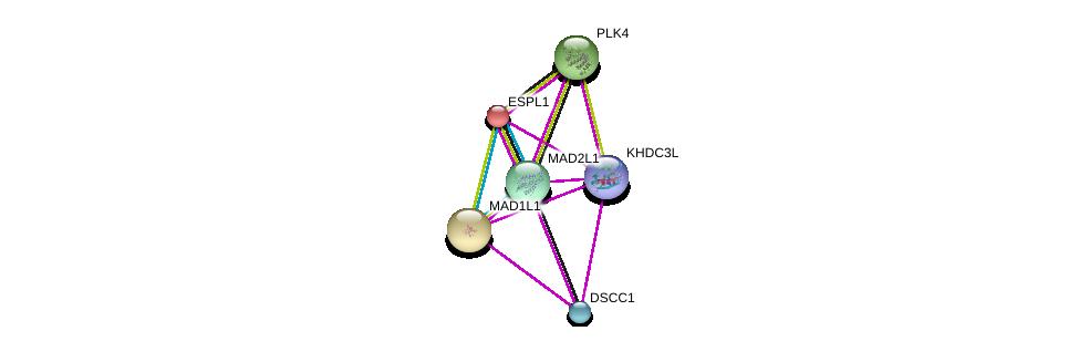 http://string-db.org/version_10/api/image/networkList?limit=0&targetmode=proteins&caller_identity=gene_cards&network_flavor=evidence&identifiers=9606.ENSP00000359392%0d%0a9606.ENSP00000257934%0d%0a9606.ENSP00000296509%0d%0a9606.ENSP00000265854%0d%0a9606.ENSP00000322180%0d%0a9606.ENSP00000270861%0d%0a