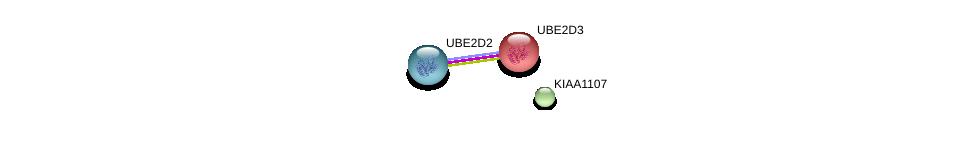 http://string-db.org/version_10/api/image/networkList?limit=0&targetmode=proteins&caller_identity=gene_cards&network_flavor=evidence&identifiers=9606.ENSP00000359404%0d%0a9606.ENSP00000349722%0d%0a9606.ENSP00000381717%0d%0a