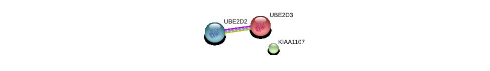 http://string-db.org/version_10/api/image/networkList?limit=0&targetmode=proteins&caller_identity=gene_cards&network_flavor=evidence&identifiers=9606.ENSP00000359404%0d%0a9606.ENSP00000381717%0d%0a9606.ENSP00000349722%0d%0a